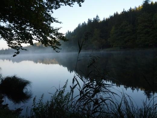 Blick auf den Deininger Weiher im Morgennebel