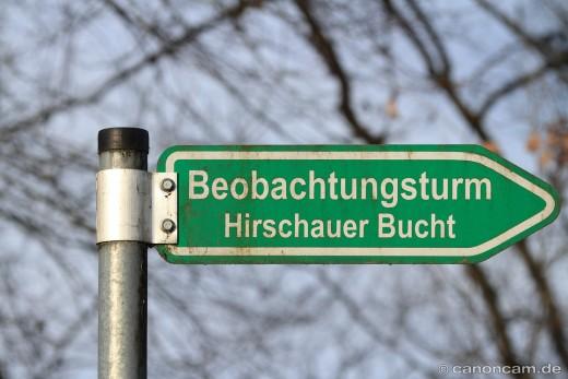Vogel-Beobachtungsturm Hirschauer Bucht am Chiemsee