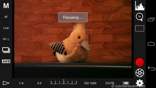 Scharfstellen durch tippen in den Fokussier-Rahmen
