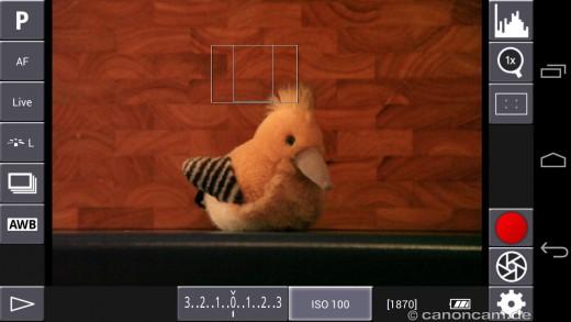 Je nach Kamera-Modus werden verschiedene Bedien-Elemente angezeigt
