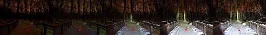 Fenix LD41 - Taschenlampe - Vier Leuchtstufen - (1=aus) 2=low, 3=mid, 4=high, 5=max