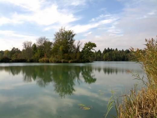 Idyllisches Gewässer im Donaualtwasser Schnödhof