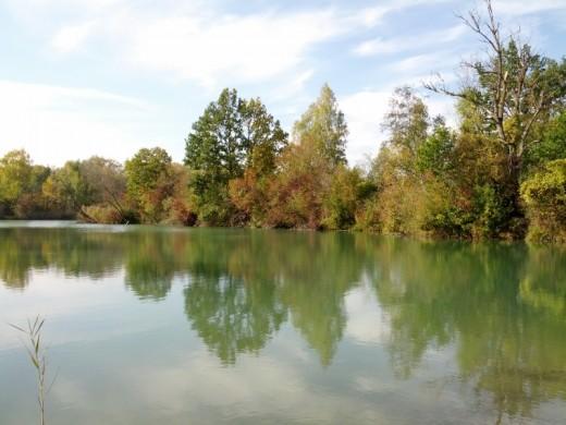 Gewässer im Donaualtwasser Schnödhof