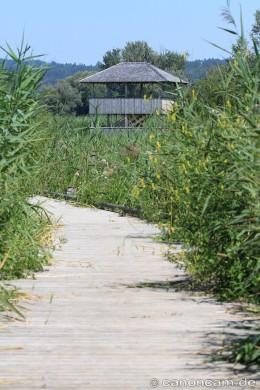 Vogelbeobachtungsturm in Dießen am Ammersee, Bohlensteg