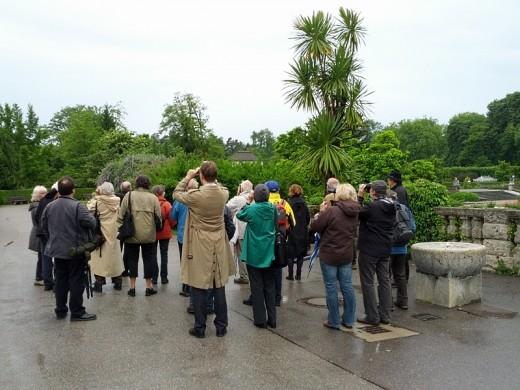 Vogelpirsch im Botanischen Garten München - Exkursion