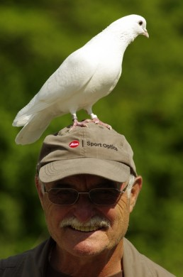 Werner Borok informiert bei Führungen durch die Hellabrunner Vogelvoliere  (c) Werner Borok