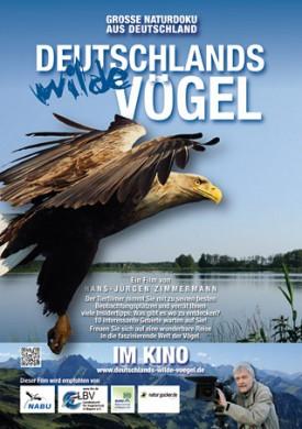 Deutschlands wilde Vögel - im Kino