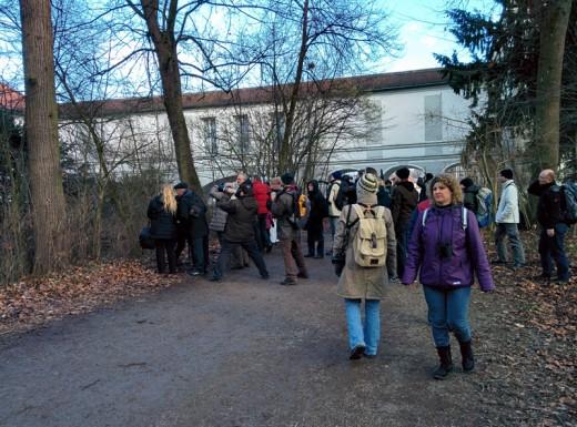 Ein Teil der Gruppe beim Kabinettskauz - Waldkauz-Führung mit Werner Borok 01/2014