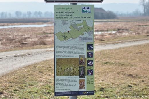 Isarmoos - Mettenbacher und Grießenbacher Moos - Wiesenbrütergebiet
