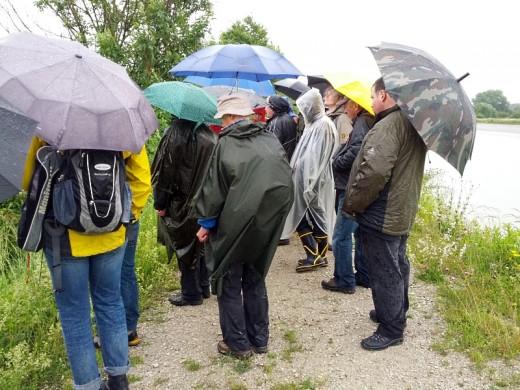 Regen, Regen und nochmals Regen... Ismaninger Speichersee