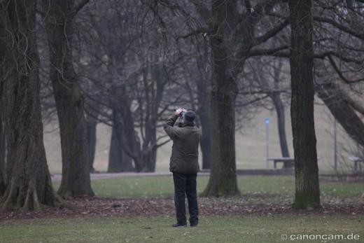 Werner Borok auf der Suche nach Mama Kauz, Hirschgarten 2013