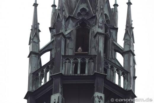Ostturm der Paulskirche